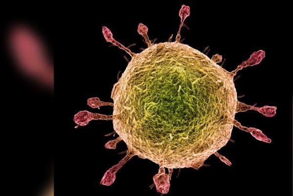 Sobe para 46 o número de mortes pelo coronavirus